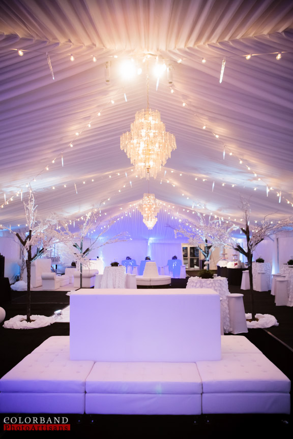 Tented Weddings & Receptions